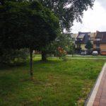 Nowy ogród powstał w Grudzicach